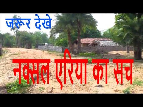 Bastar Chattisgarh| बस्तर छत्तीसगढ़ की समस्या| Report|Naxalite area| Video by the thaat