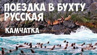 Камчатка Бухта Русская