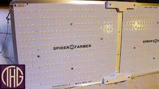 Spider Farmer Sf2000 Review No Fans And Amazing Performance Youtube