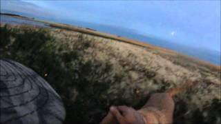 Охота на гусей в Канаде