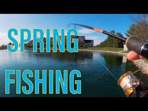 This Pond Is AMAZING! | Ohio Fishing
