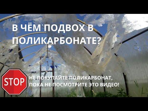 Какой поликарбонат купить для теплицы? Как выбрать теплицу из поликарбоната. Часть 2.