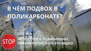 какой поликарбонат купить для теплицы? Как выбрать теплицу из поликарбоната. Часть 2