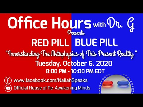 Red Pill and Blue Pill  - The Metaphysics of This Present Reality