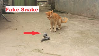 Try Not To Laugh || Fake Snake Vs Cat || Must Watch Funny Prank 2020