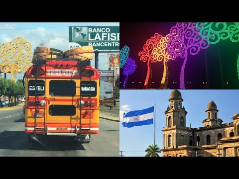 Managua, Nicaragua  | The Tree of Life
