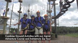 Corporate Team Building At Take Flight Aerial Adventure Course