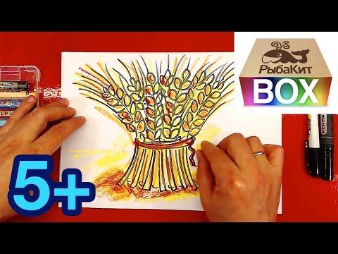 Как нарисовать колос пшеницы