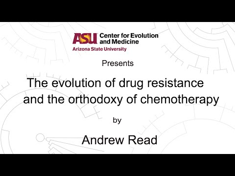 The evolution of drug resistance and the orthodoxy of chemotherapy | Andrew Read