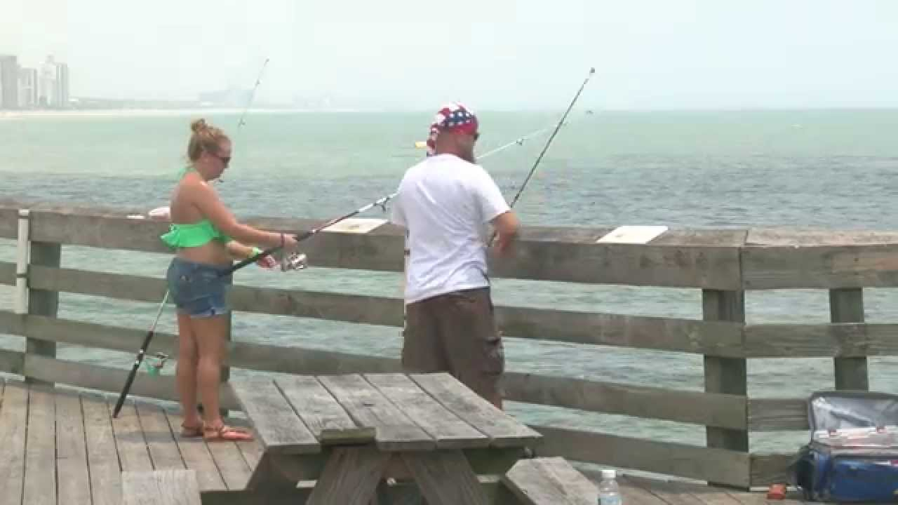Myrtle beach to consider chumming ban from fishing piers for Shark fishing myrtle beach