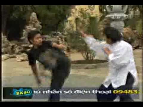 Triệt Quyền Đạo Việt Nam (2).flv