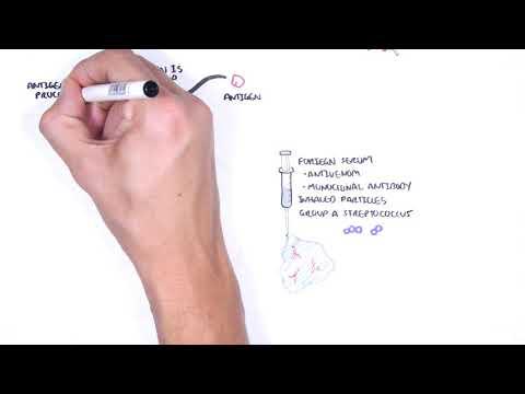Hypersensitivity Type III (Immune complex hypersensitivity) - causes,  pathophysiology
