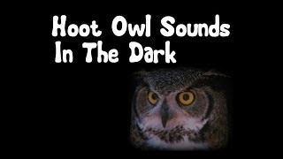 Hoot Owl Sounds in the Dark