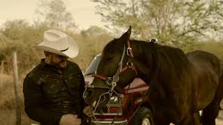 El Golden Boy  -  El Komander  - Preview  - Video Oficial  - Gran Estreno 7 de Agosto