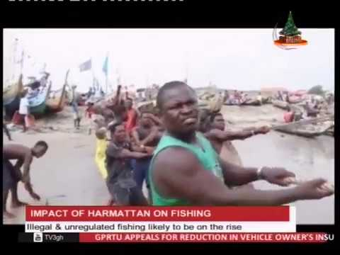 illegal and unregulated fishing likely to be on the rise - 29/12/2016