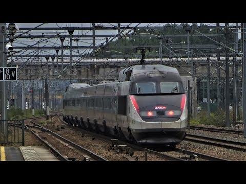 Live 6 : Fast Trains / Gare de Vaires-Torcy - TGV, Trains, TER, Fret