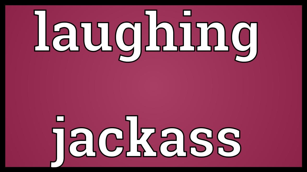jack ass Laughing