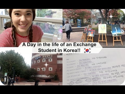 A Day in the Life of an Exchange Student in Korea!!