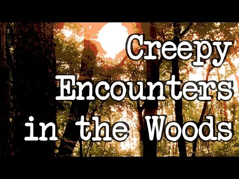 True Scary Stories: Explorers of Reddit Reveal their Creepy Encounters in the Woods