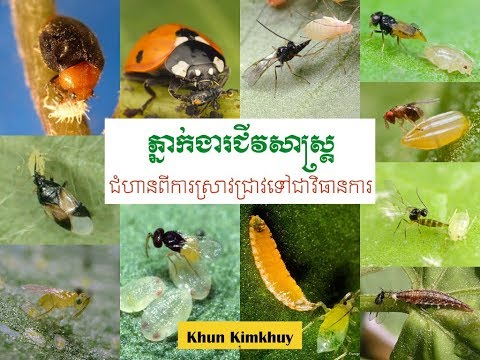 Special presentation about biological control agents