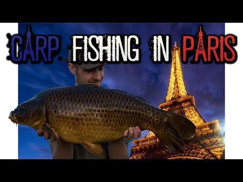 URBAN CARP FISHING In PARIS!