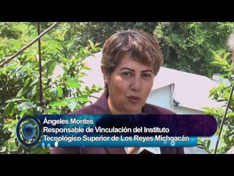 VINCULACION ACADÉMICA DEL TECNOLÓGICO SUPERIOR LOS REYES, MICHOACÁN - UNIVERSO PYME