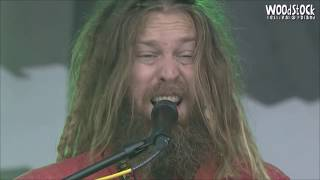 Mike Love - I Love You & Permanent Holiday Live at Woodstock Poland 2016
