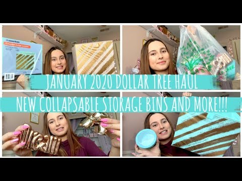 JANUARY 2020 DOLLAR TREE HAUL! NEW COLLAPSABLE STORAGE BINS AND MORE!!!
