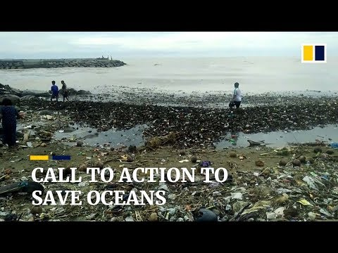 Call for radical change in the world's approach to ocean management