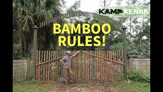 So Many Uses for Bamboo! thumbnail