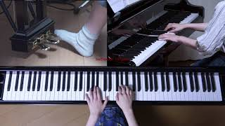 Chopin Sostenuto Waltz in E flat major Op.posth. (No.18) 使用楽譜:...