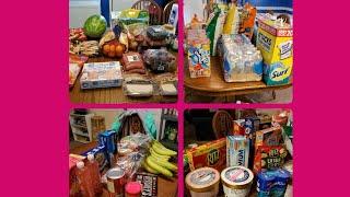 Sam's/Walmart Family of 7 Grocery haul July 2018