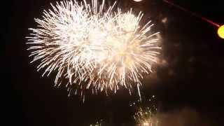 2014年7月26日八王子富士森公園花火大会