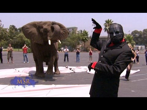 MASKED MAGICIAN CLASSIC: ELEPHANT APPEARS OUT OF THIN AIR!