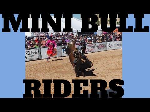 Las Vegas Events: Mini Bull Riders PBR Bull Riders 2014