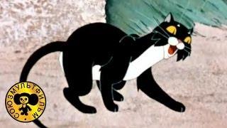 Кот, который гулял сам по себе
