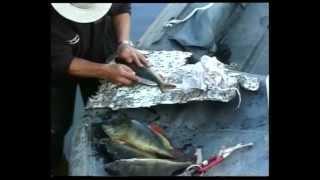 Рыбалка видео онлайн. Подборка видео передач о рыбалке