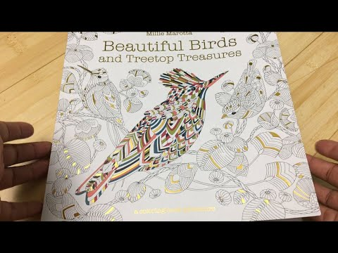 Beautiful Birds And Treetop Treasures A Millie Marotta Adult Coloring Book