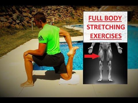 full body stretching exercises for flexibility  youtube