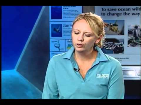 Christy Ryan of the United States Geological Survey