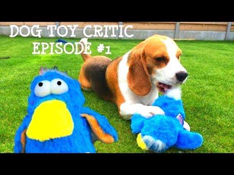 Dog Toy Critic Louie The Beagle Episode #1 : KONG Dodo