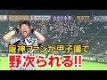 阪神交流戦連敗スタートでホークスファンに野次られる!9回鳥谷選手が代打でヒットを打つも高橋遥人がKOされソフトバンクホークスに痛い負け。