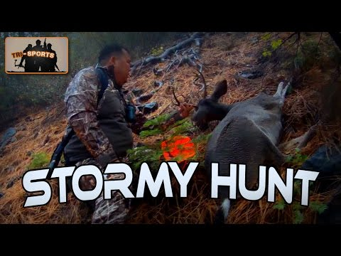 HUNT - Stormy And Rainy Deer Hunt