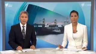 SBS World News - Montage (17/2/2014)