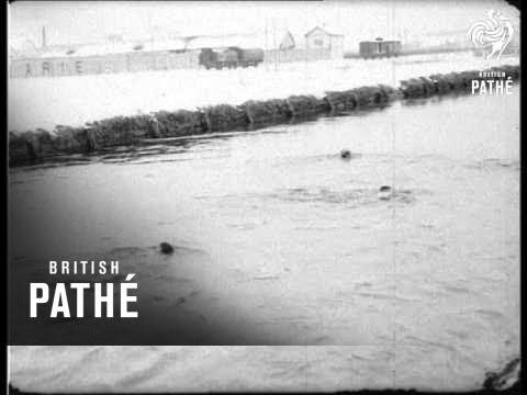 swimming-(1917)