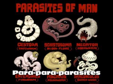 Parasites Song Karaoke Style