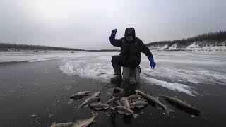 Первый лед в Якутии! Yakutia