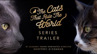 SERIES TRAILER | THE CATS THAT RULE THE WORLD | SHEBA®