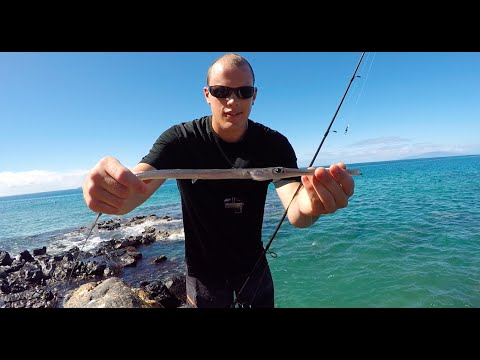 Shore fishing hawaii catching cornetfish youtube for Shore fishing oahu