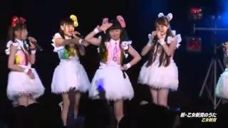 乙女新党 『新・乙女新党のうた』